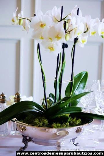centros de mesa con orquideas para boda