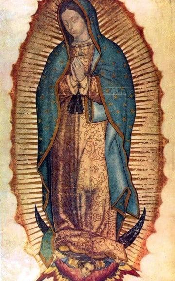imagenes de nuestra señora de guadalupe