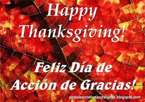 tarjetas de thanksgiving free