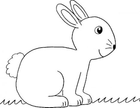 conejos faciles de dibujar e imprimir