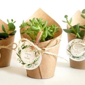 recuerdos para boda civil plantas