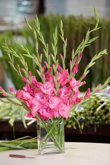 arreglos florales con gladiolas ocasion especial