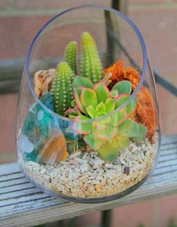 centros de mesa con cactus y piedras