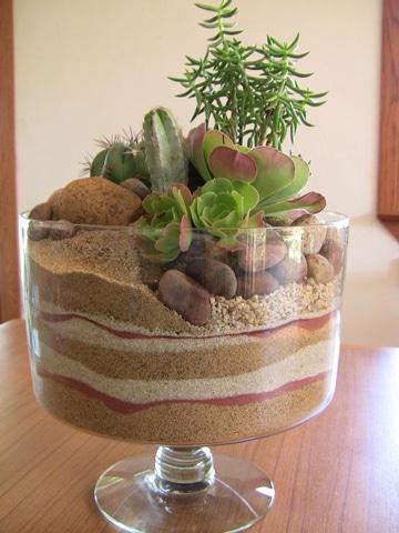 centros de mesa con cactus y suculentas