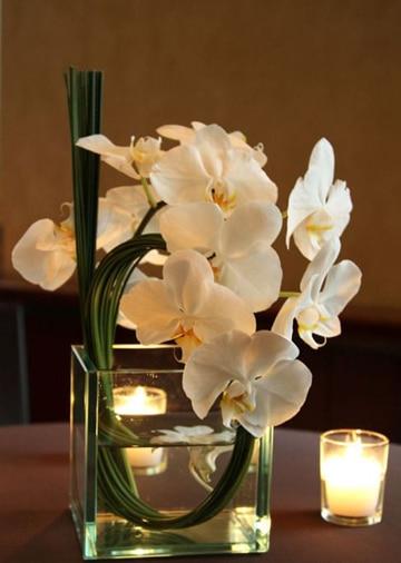 centros de mesa con orquideas blancas