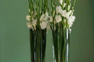Hermosos Arreglos Florales En Jarrones De Diversos Tamaños