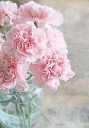 centros de mesa con claveles rosados