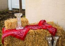 Originales y sencillos adornos vaqueros para fiestas
