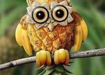 Ideas para hacer adornos con frutas decoradas para fiestas