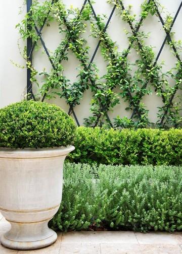 paredes de jardin decoradas con matas
