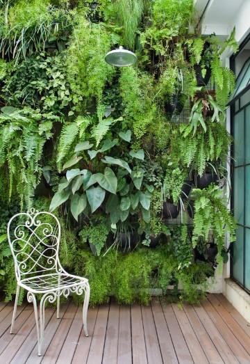 paredes de jardin decoradas con plantas