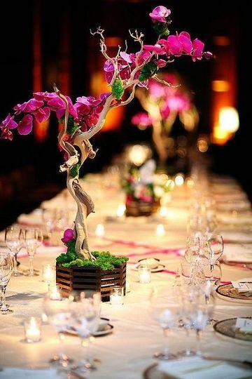centros de mesa con plantas naturales con flores