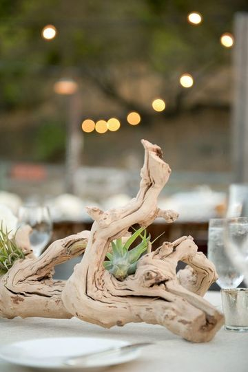 centros de mesa con plantas naturales con tronco
