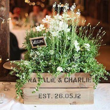 centros de mesa con plantas naturales personalizada