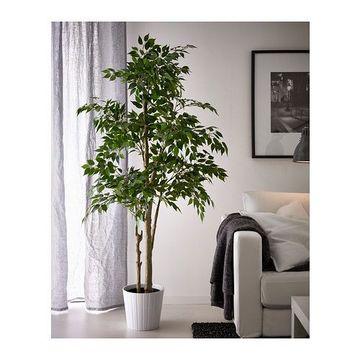 plantas artificiales para sala mediana