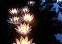 Diseños únicos y delicados de luces flotantes para piscinas