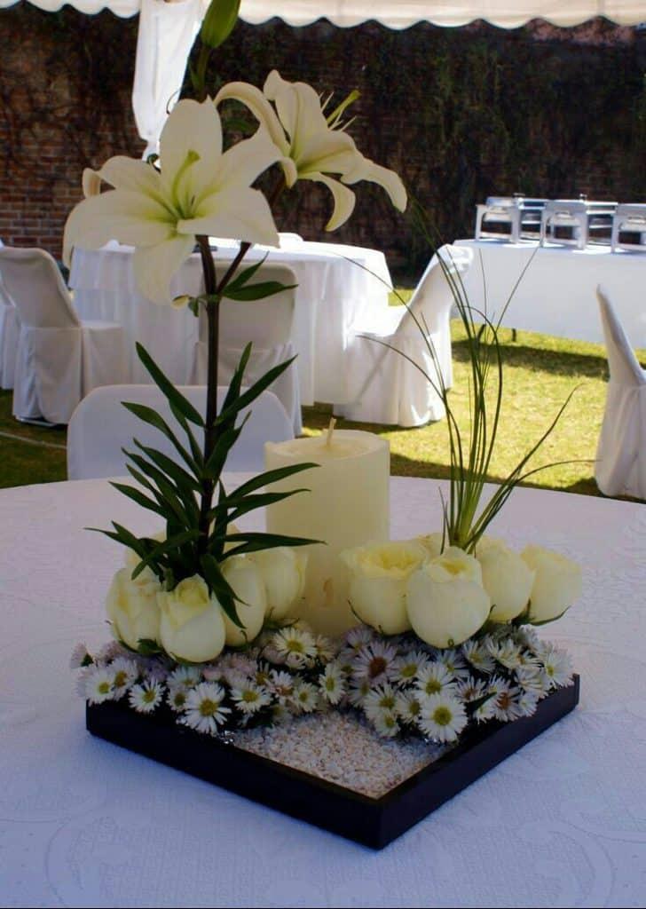 plantas para centros de mesa para bodas