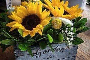 Consejos para arreglos florales con girasoles