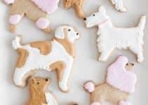 4 ideas para decoracion de fiesta para perros muy divertidas