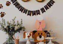 4 ideas para un cumpleaños tematica perros