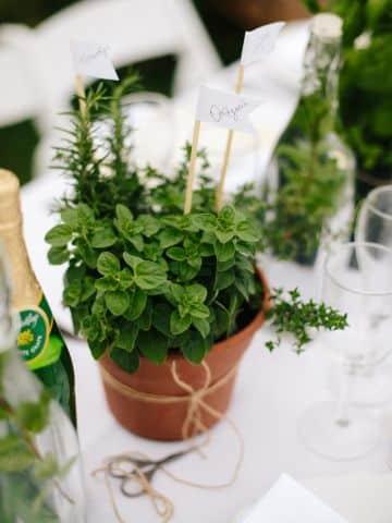 centros de mesa para jardin con maceteros