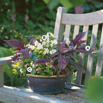 centros de mesa para jardin sencillos