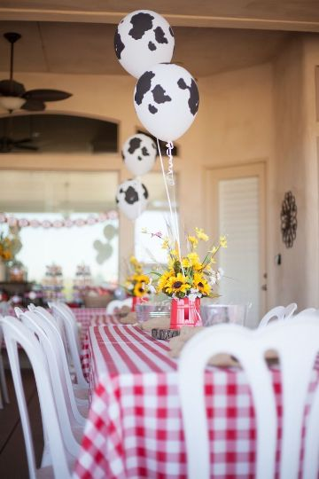 decoracion de cumpleaños de granja para bebes