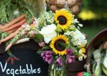 4 ideas para una mesa dulce de la granja de zenon