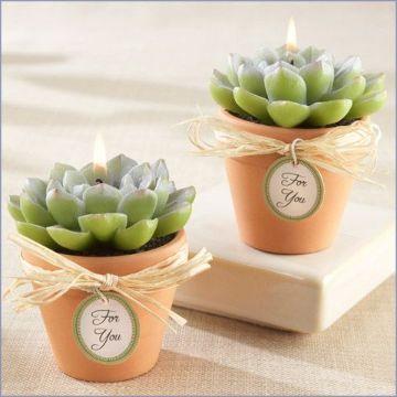 velas en forma de cactus y suculentas
