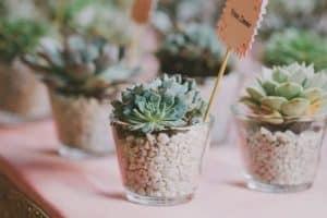 4 formas de usar suculentas para centros de mesa en bodas