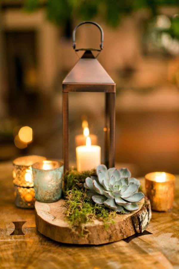 suculentas para centros de mesa y velas