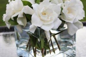 3 diferentes centros de mesa con gardenias para tus celebraciones